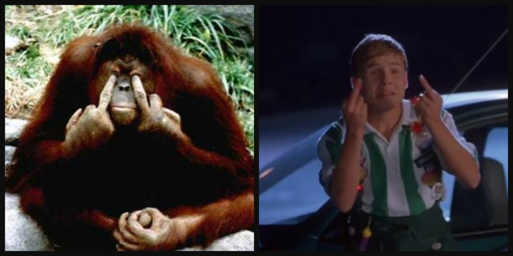110_office_space_flair_guy_orangutan_middle_finger