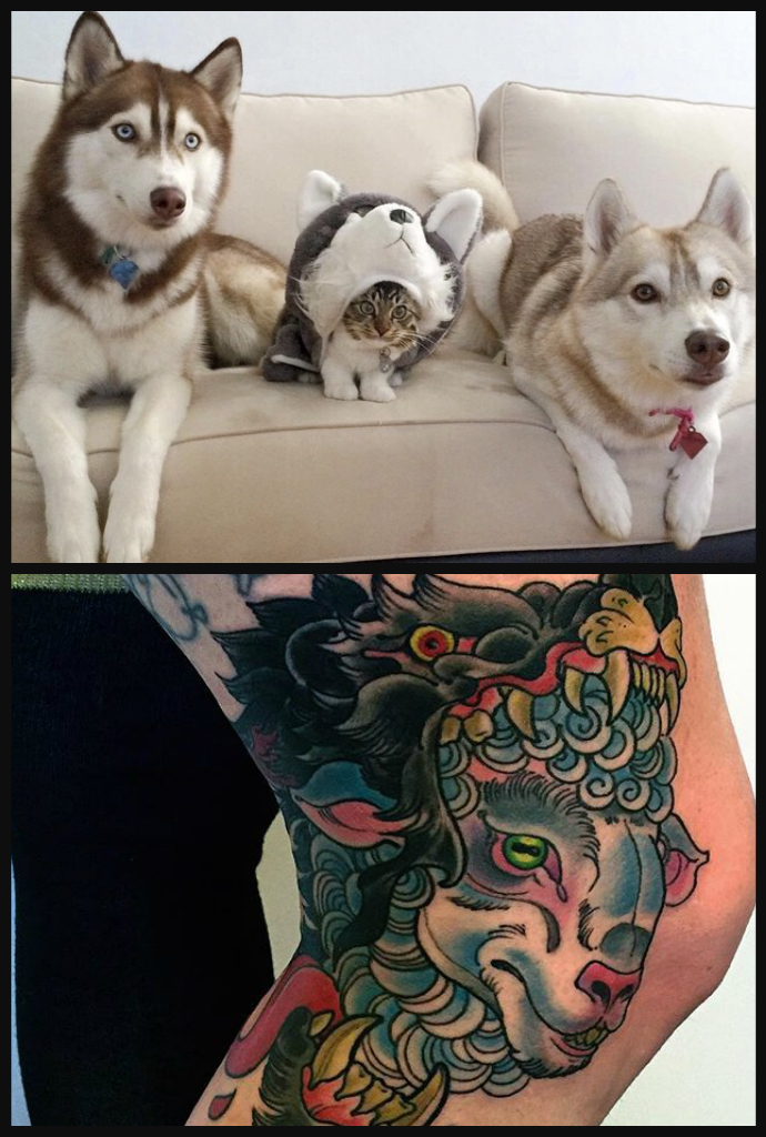 208catashuskytattooofsheepwolf.jpg