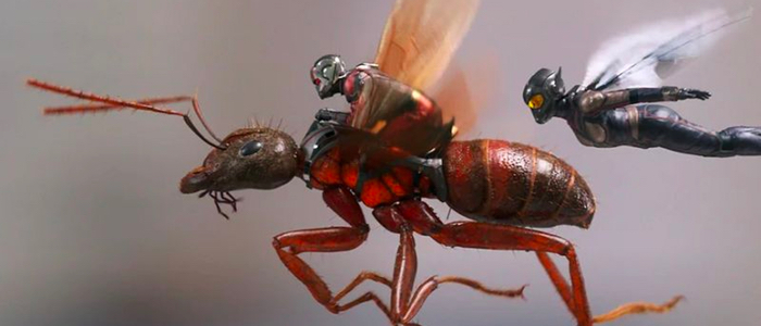 ant-man-and-the-wasp-images.jpg
